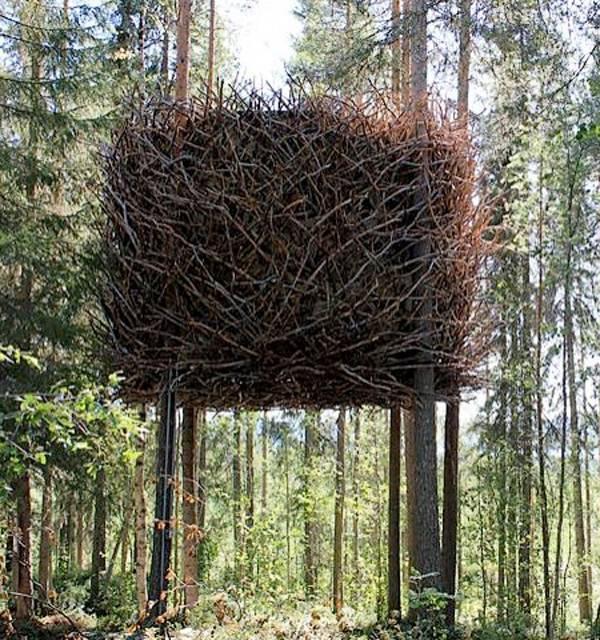 Необычный дом в виде птичьего гнезда