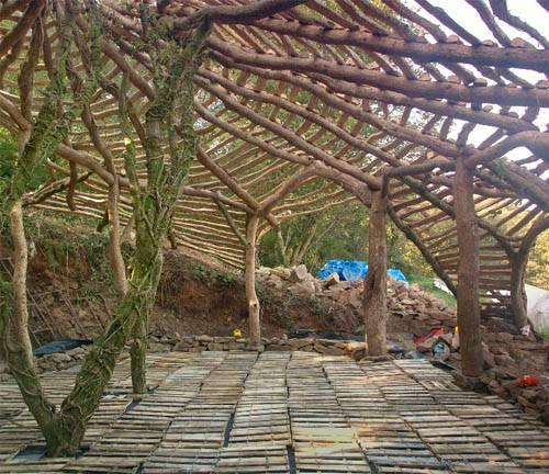Саймон Дейл построил дом сказку для своей семьие