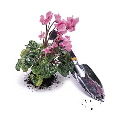 Садовый инвентарь, садовые инструменты