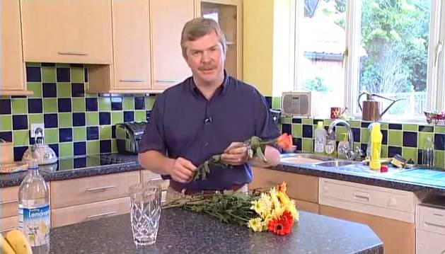 Сад и огород - cекреты и советы