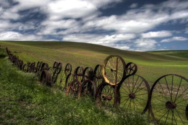 Древний забор