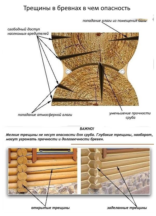 Причины появления трещин на бревнах