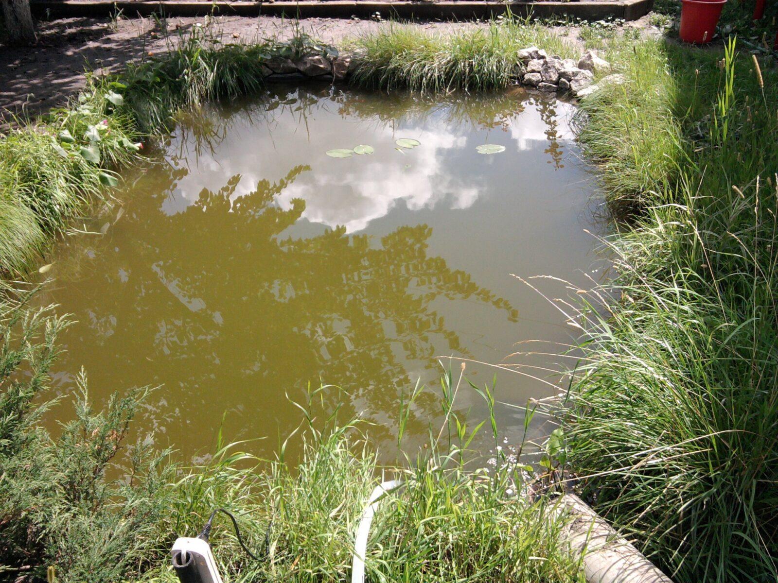 Очистка воды: Помпа подключается к электросети