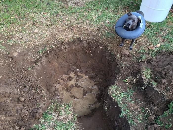 Как выкопать траншею