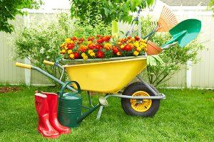 Садовая тачка: как выбрать такую, с которой работа в удовольствие