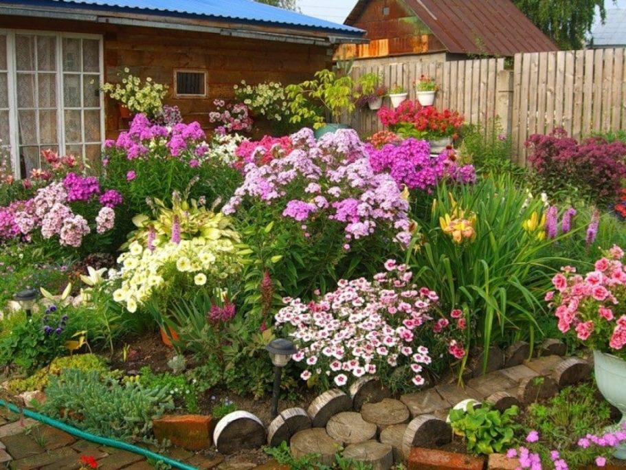Цветы можно посеять уже в марте