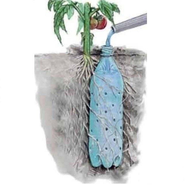 идея поливки растений