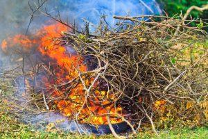 Как сжечь мусор на даче, не устроив вселенский пожар