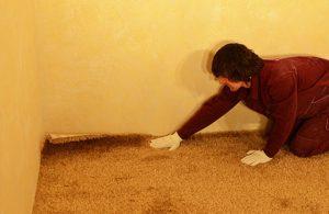 Как правильно выбрать и уложить ковролин