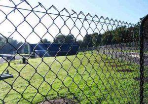Как модернизировать и сделать более привлекательным забор из сетки-рабицы
