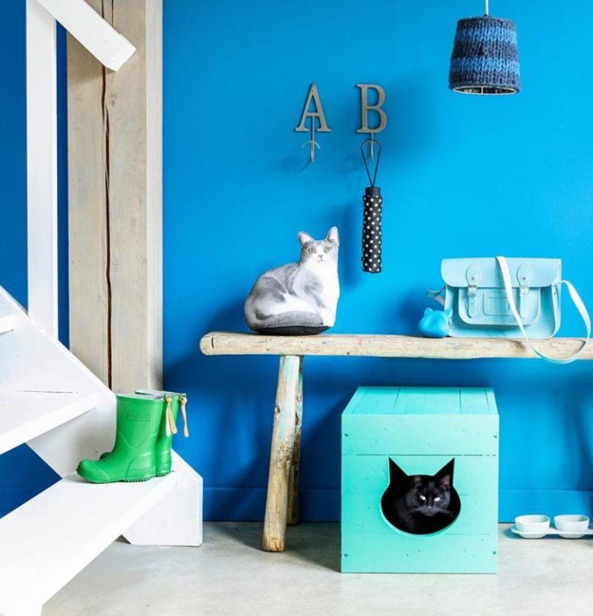 Туалет для кошки из обычного ящика