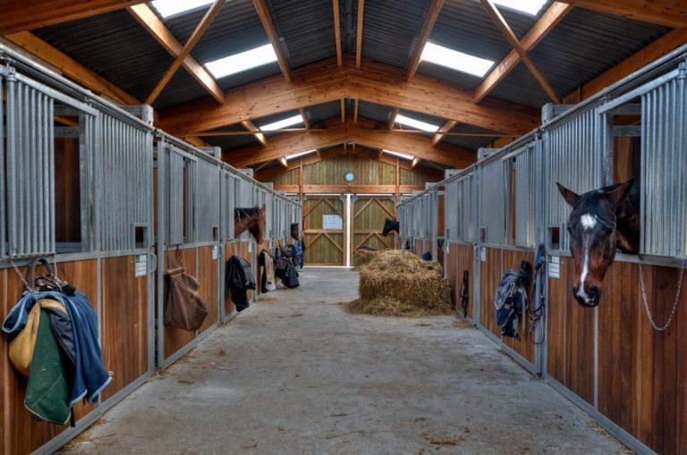 Правила составления проекта постройки частной конюшни