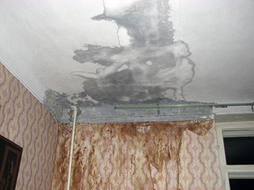 Получить компенсацию за протекание крыши: фотофакт