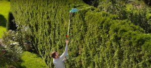 Новые садовые гаджеты: Телескопическая аккумуляторная пила Gardena TCS