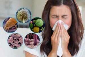 Особенности обустройства жилья для аллергика