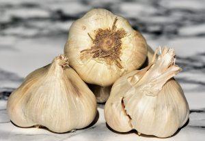 Хранение чеснока: как сохранить полученный урожай