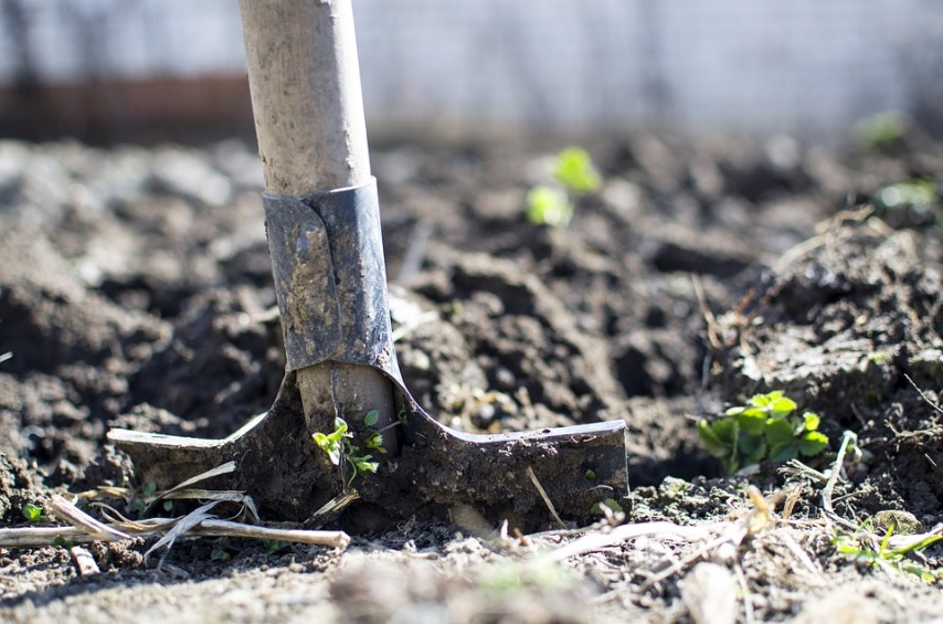 Для чего перекапывать почву в октябре