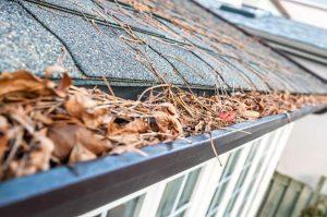 Как защитить водосборный желоб от скапливания в нем листьев и мусора