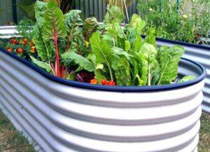 Готовимся к весне: как выращивать на высоких грядках