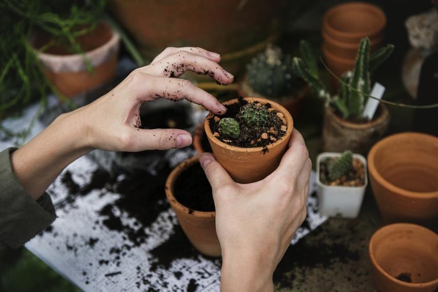 Как сохранить красоту кожи рук