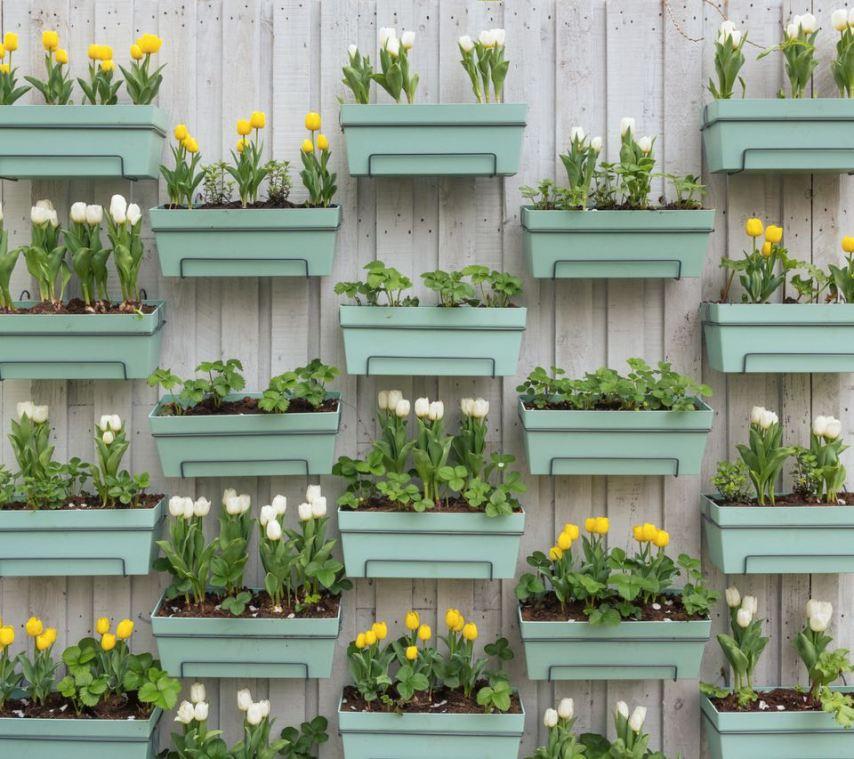 Контейнеры для растений