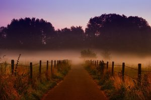Самовольный захват земли: что это и чем грозит