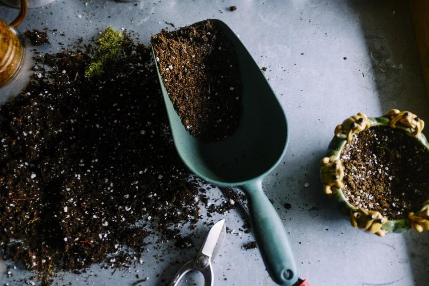 Почва для маргариток