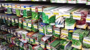 Раскрываем секреты шифров на этикетках пакетиков с семенами