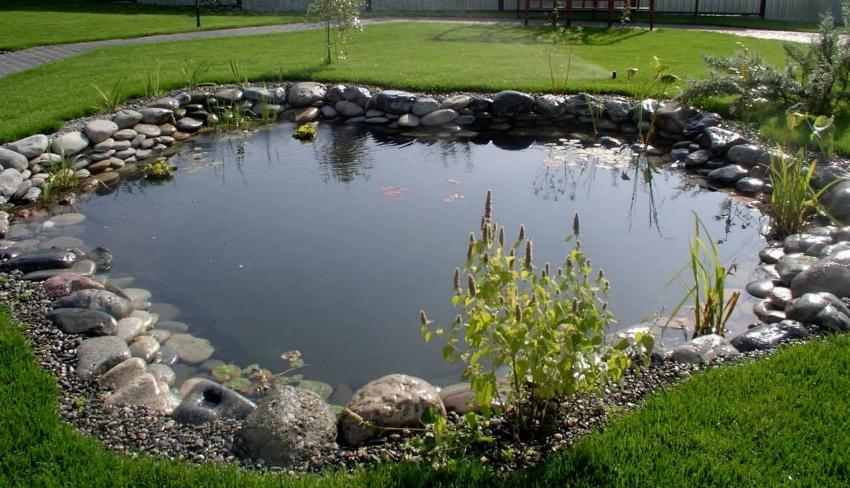 пейзажный водоем