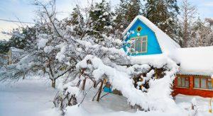 Работы садовода на макушке зимы