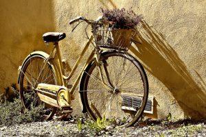 Весна и велосипед: совместим полезное с приятным