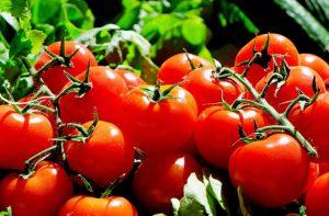 Особые подкормки для помидоров
