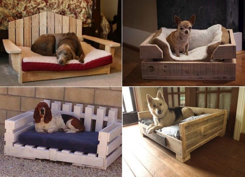 Диваны для собак в частном доме