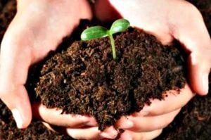 Органические удобрения, часть I