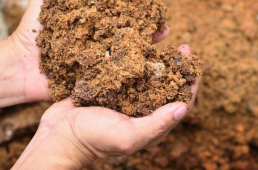 Опилки - органическое удобрение