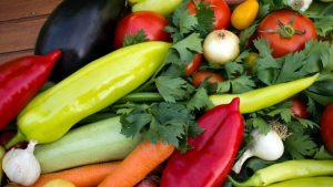 Дезинфекция почвы – залог здоровья растений