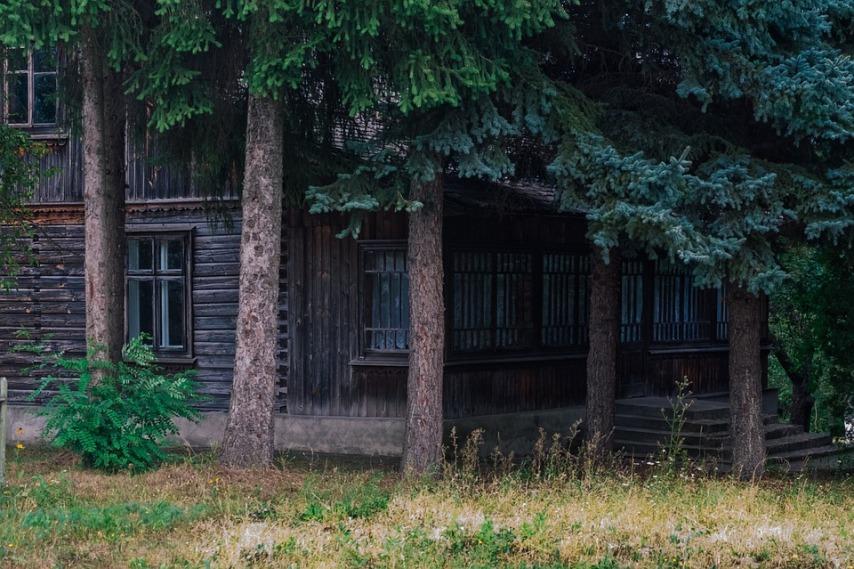 Гниет деревянный дом