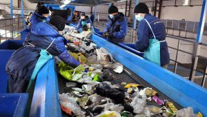 Мусорная реформа: переработка мусора