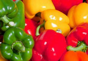 Выращиваем болгарский перец без ошибок