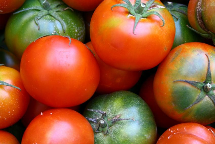 помидорные секреты