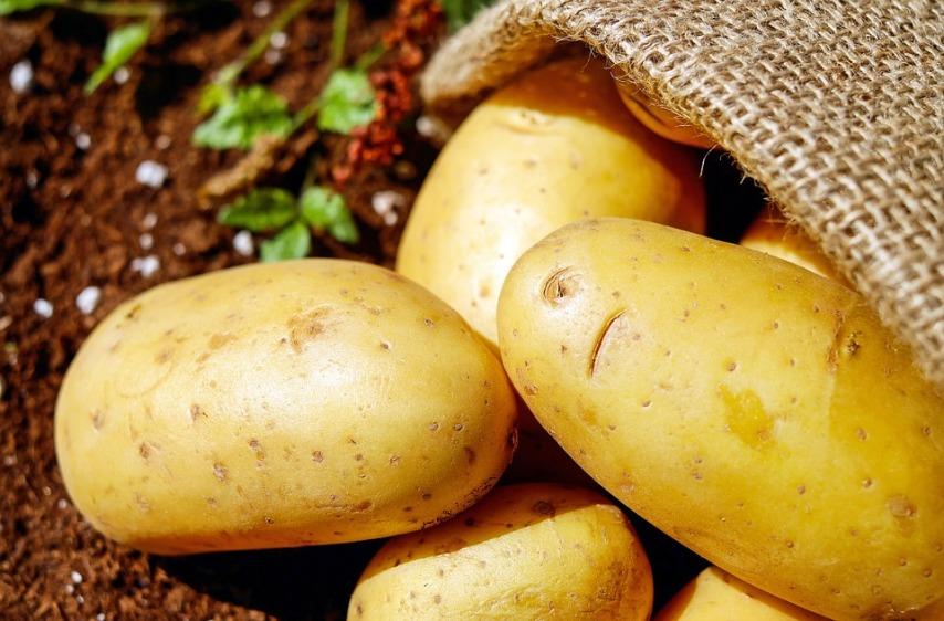 О цветках картофеля
