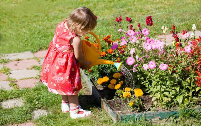 детский цветник