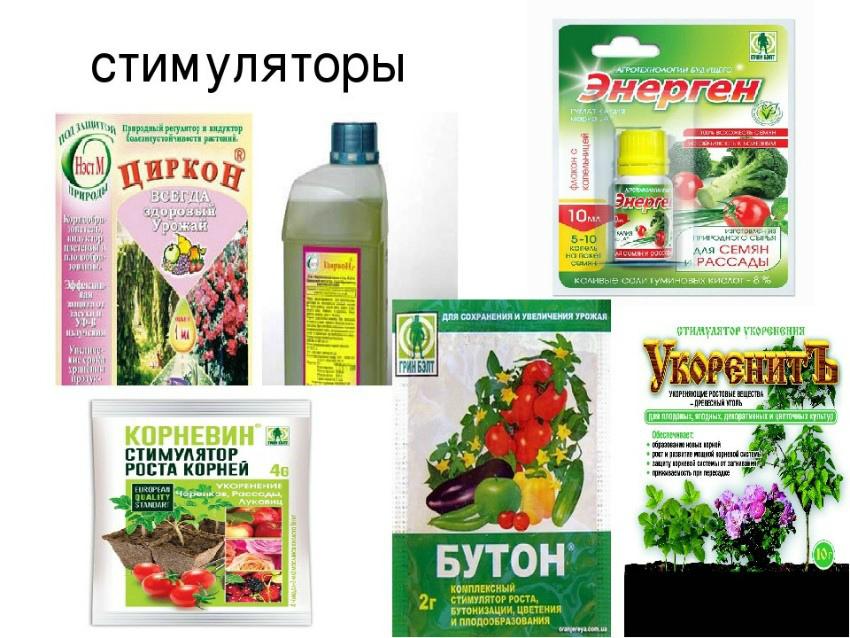 стимуляторы растений