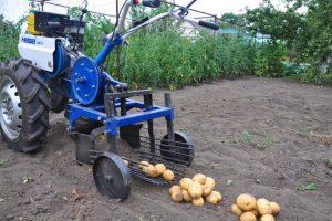Картофелекопалка: какую выбрать, как настроить и как сделать своими руками