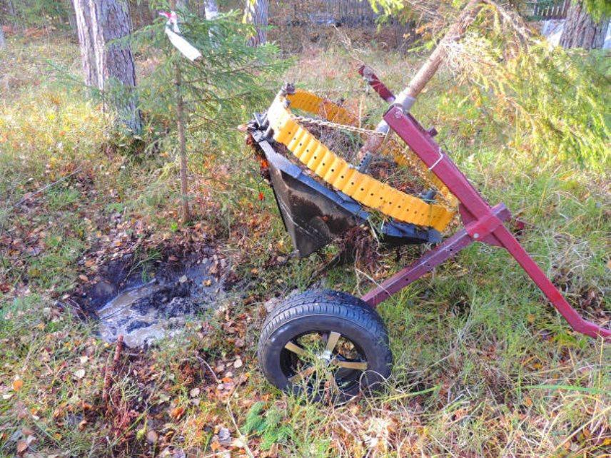 Пересадка - Подъем дерева рохлей