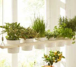 Нашим огородникам: подвесная полка для ароматной зелени